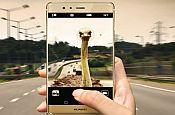 Huawei ostrich