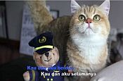 MAS Catkaraoke