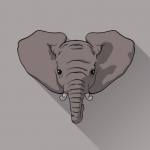 What would Abdul Razak do with a free elephant?