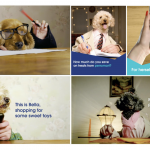 Perromart collaborates with TGH Collective to launch quirky video series on furbabies
