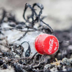 Coca-Cola, Pepsi and Nestlé named top plastic polluters for third year in a row