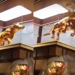 Immersive media company behind Pavilion KL's realistic Bull Charge Project